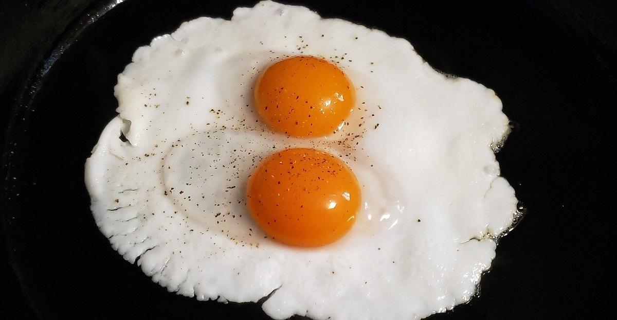 Comer um ovo por dia pode aumentar o risco de morte