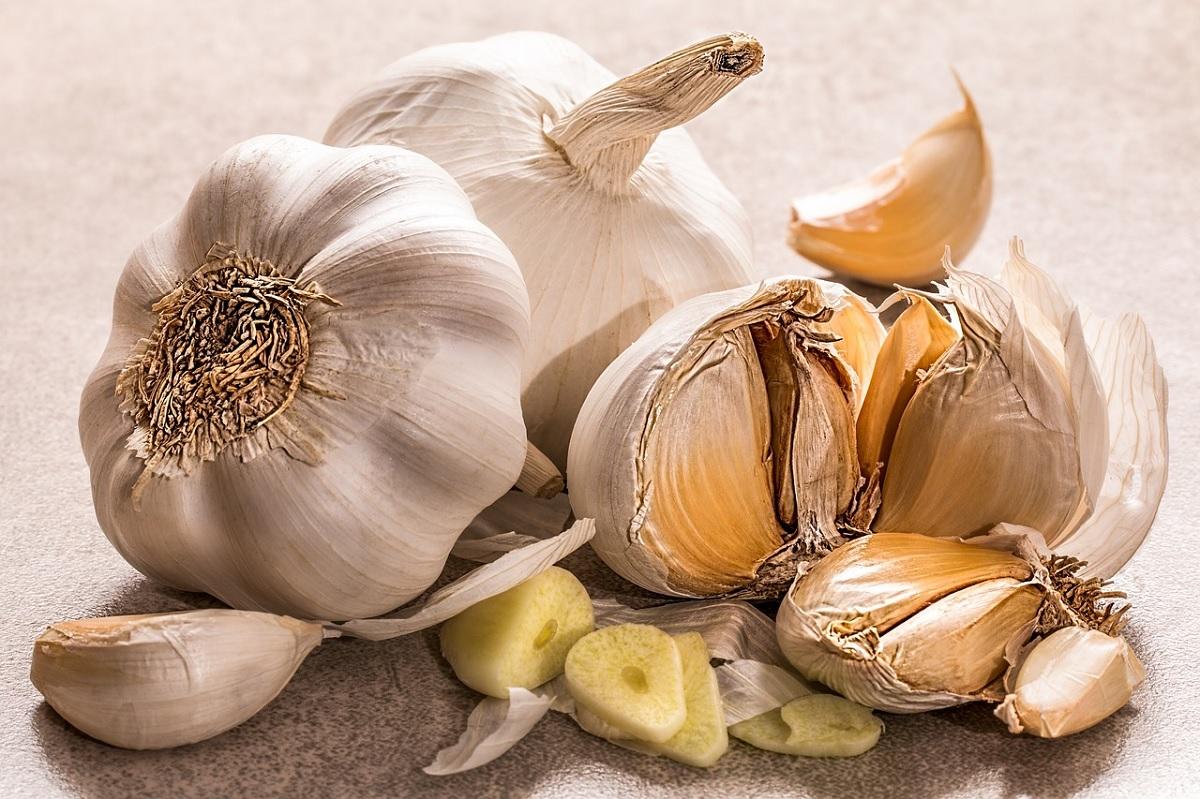 Confira 5 alimentos que fortalecem o sistema imunológico