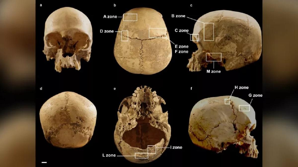 Crânio misterioso encontrado em caverna da Itália tem quase 6.000 anos