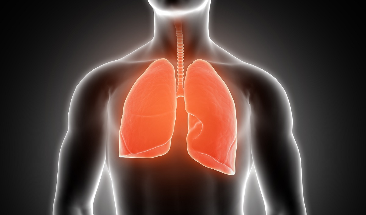 Saiba o que é a embolia pulmonar que afetou o ator Paulo Gustavo
