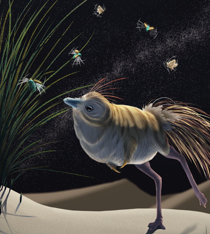 Conheça o dinossauro que tinha hábitos noturnos como os da coruja
