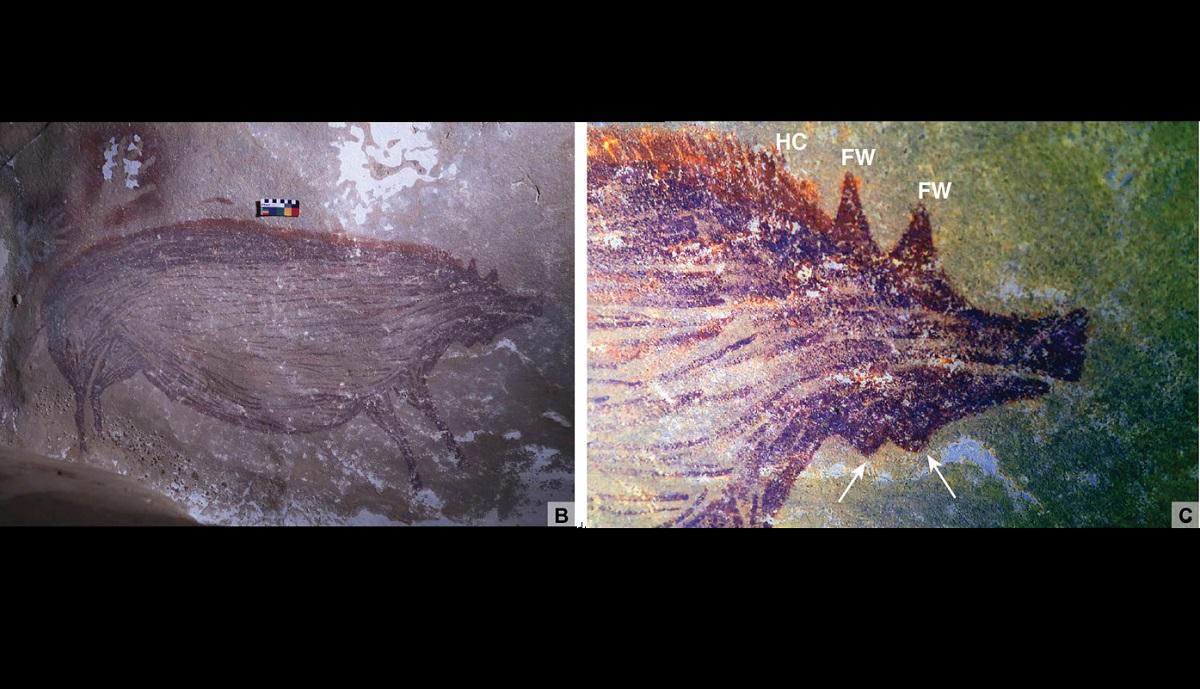 Pinturas rupestres mais antigas da história podem desaparecer e clima é o principal culpado