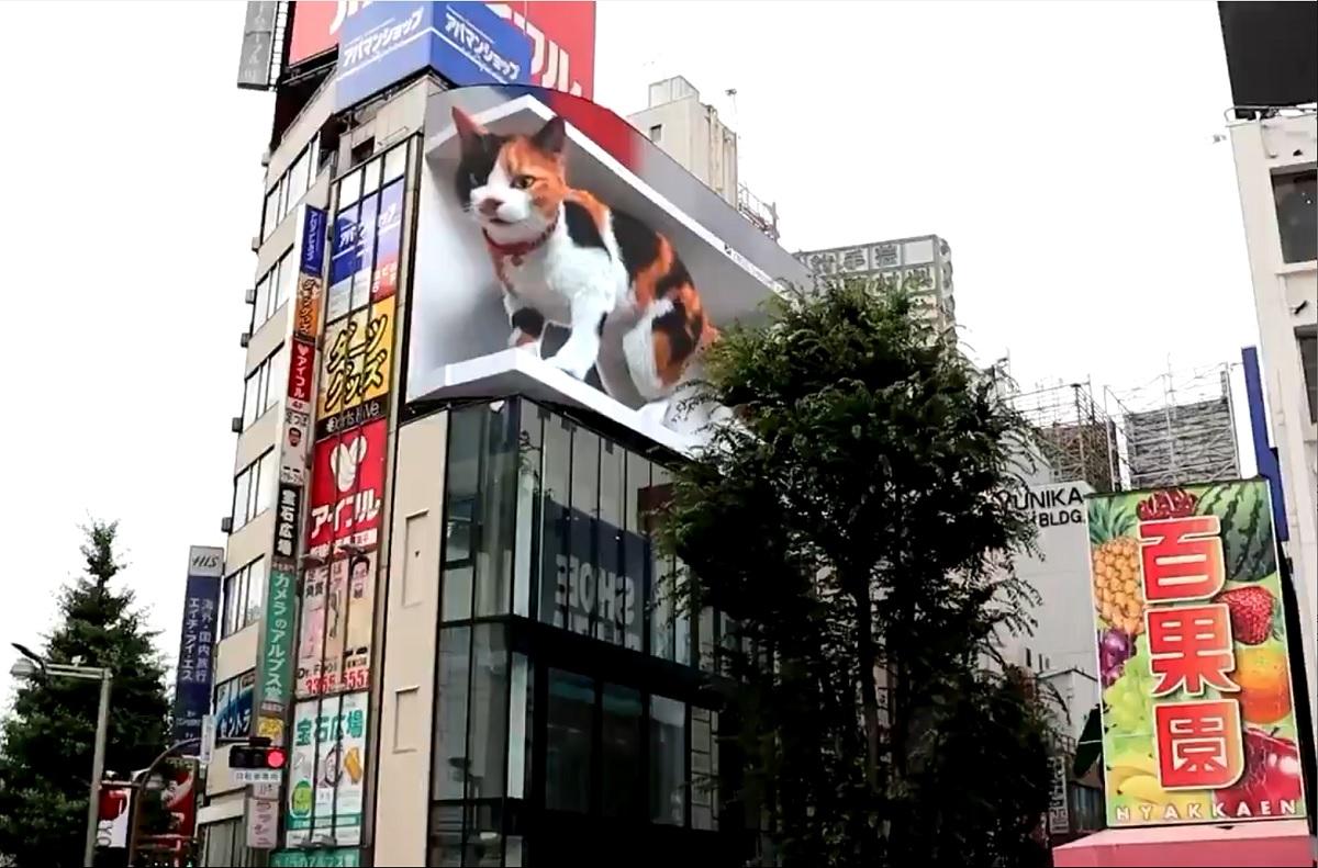 Gato malhado gigante em 3D faz sucesso em Tóquio