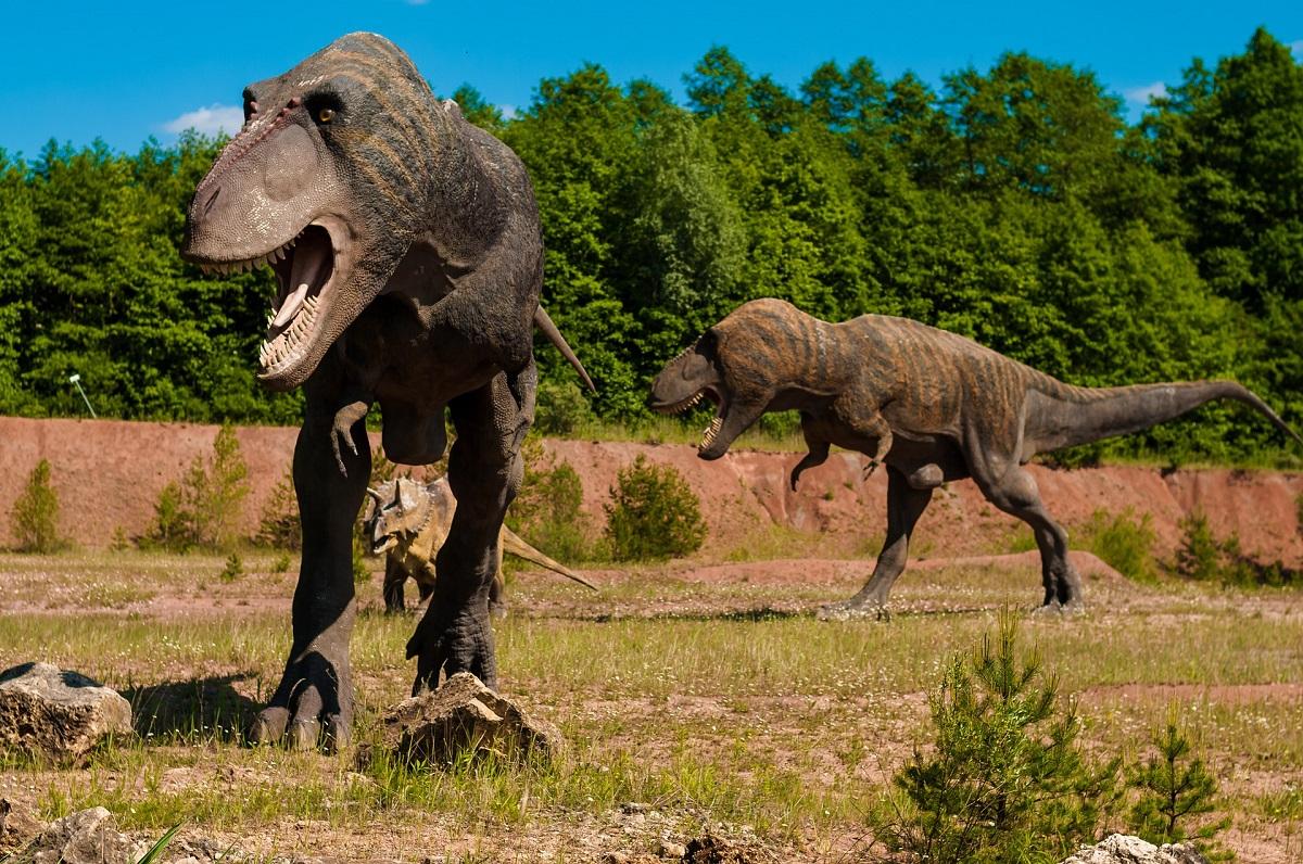 Dinossauros já estavam desaparecendo antes do fatídico asteroide